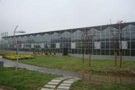 西安曲江博览园展示温室