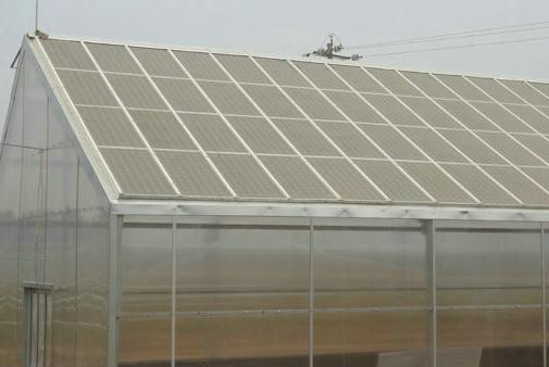 TCWS光伏农业温室