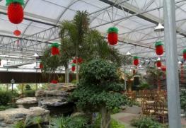 TCST型生态餐厅温室